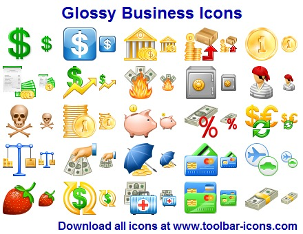 Glossy Business Icon Set